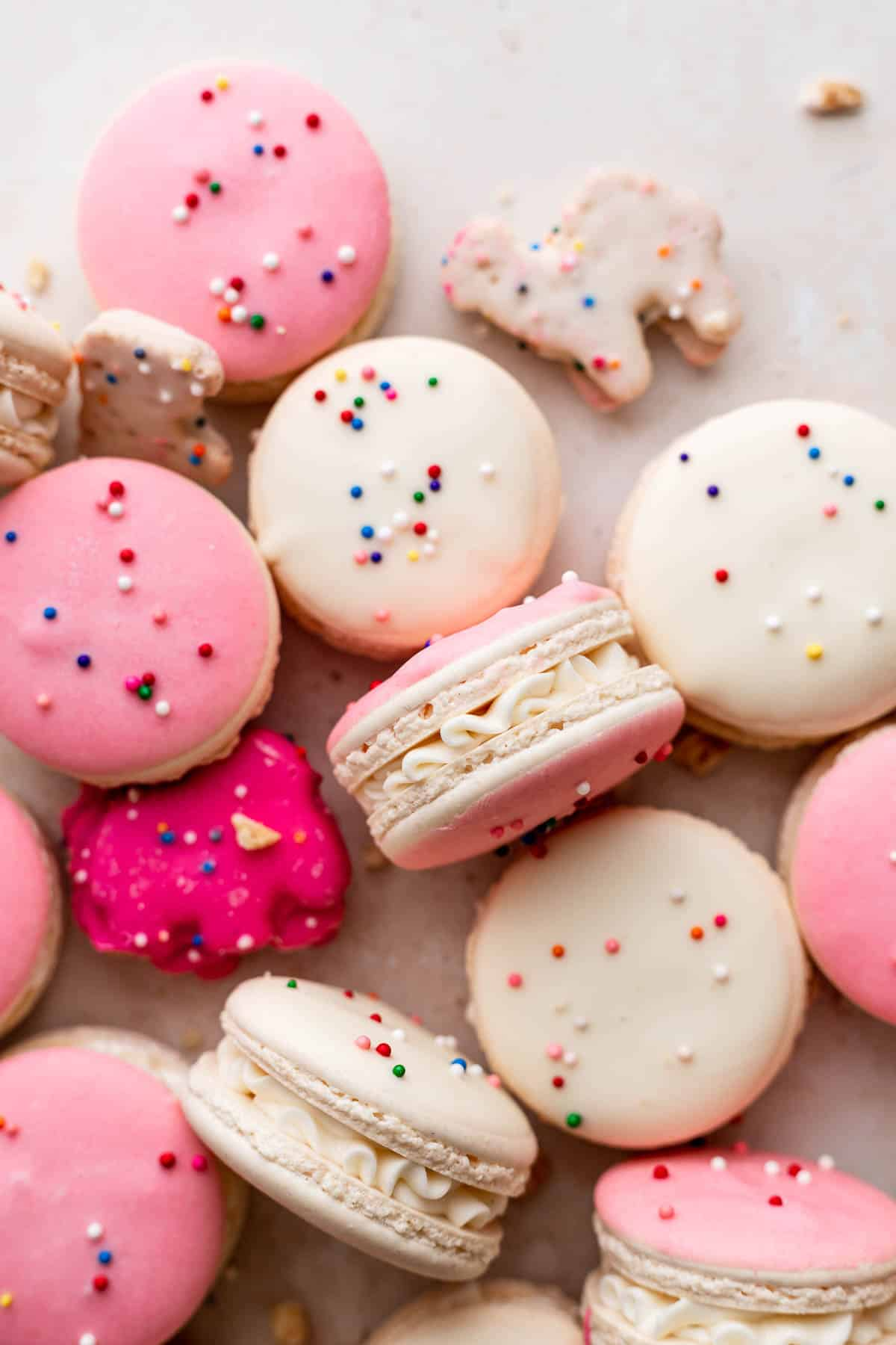 birthday cake macarons surrounded by animal cookies.