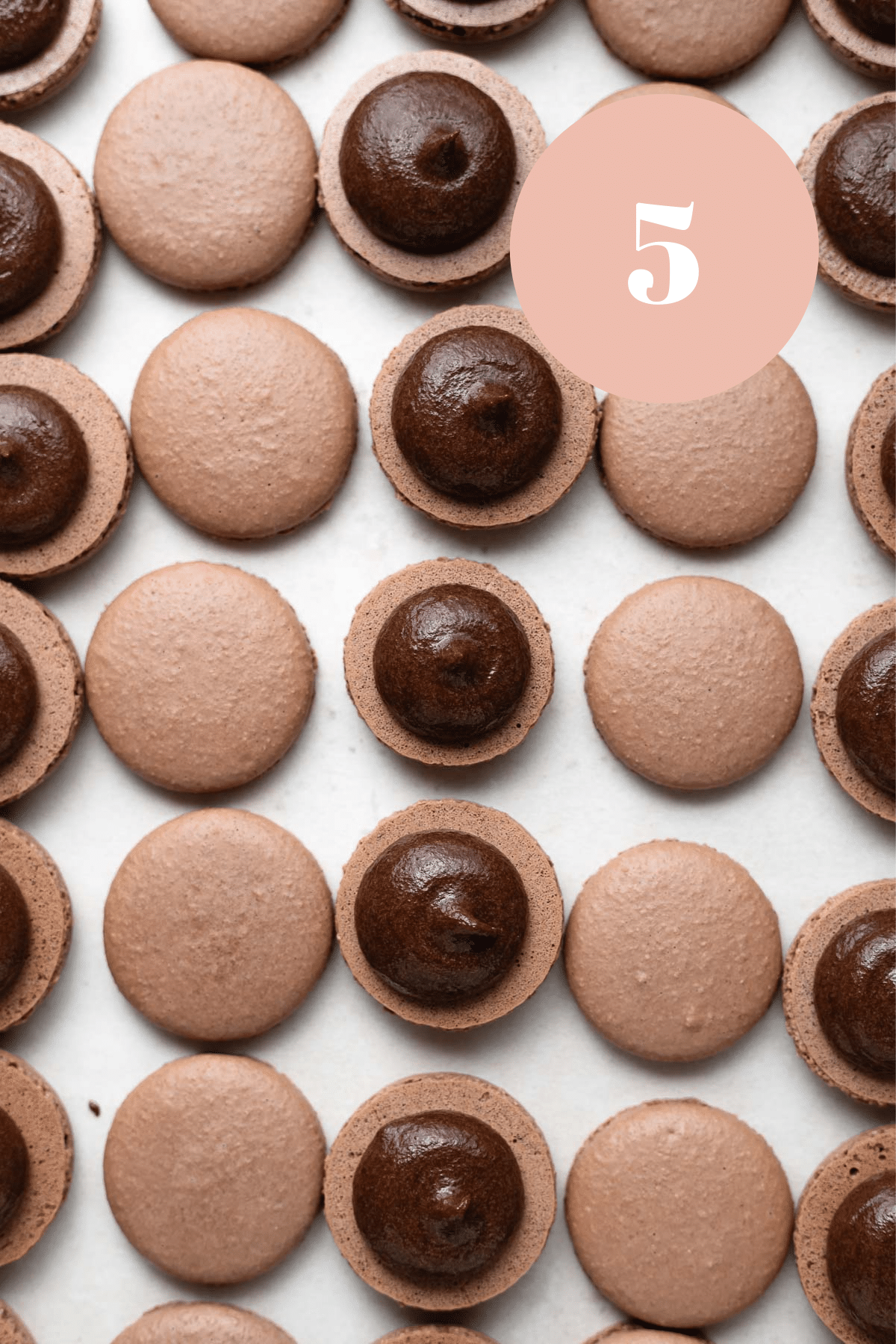 an overhead shot of the macarons once the filling has been piped one shell